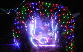 Радость праздника Рождества Христова